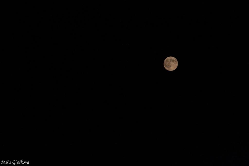 měsíc / moon