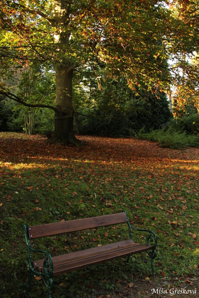 podzim / autumn